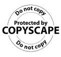 Copyscape - warning banner - browser media