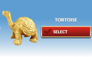 Go team tortoise
