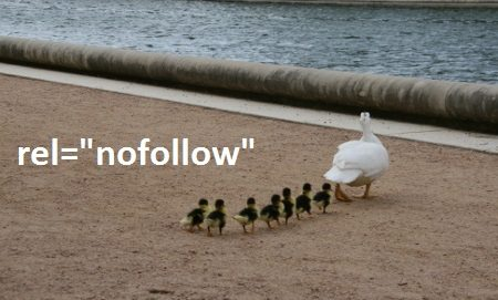 nofollow links - browser media - via pics4learningDOTcom
