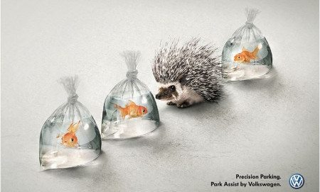print-advertising-is-not-dead-my-five-201-browser-media